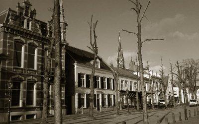 Centrummanagement Oosterhout (2009)